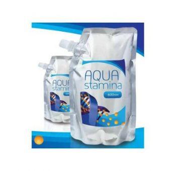 Vodíková voda - Aqua stamina 420 ml