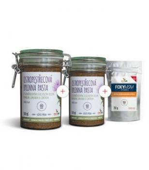 Výhodný set 2 x Ostropestřecová bylinná pasta 500 ml + FOXY MSM s vitamínem C 350 g